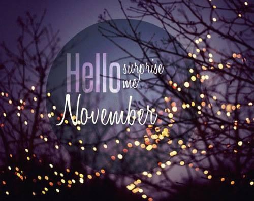 45923 Hello November Surprise Me