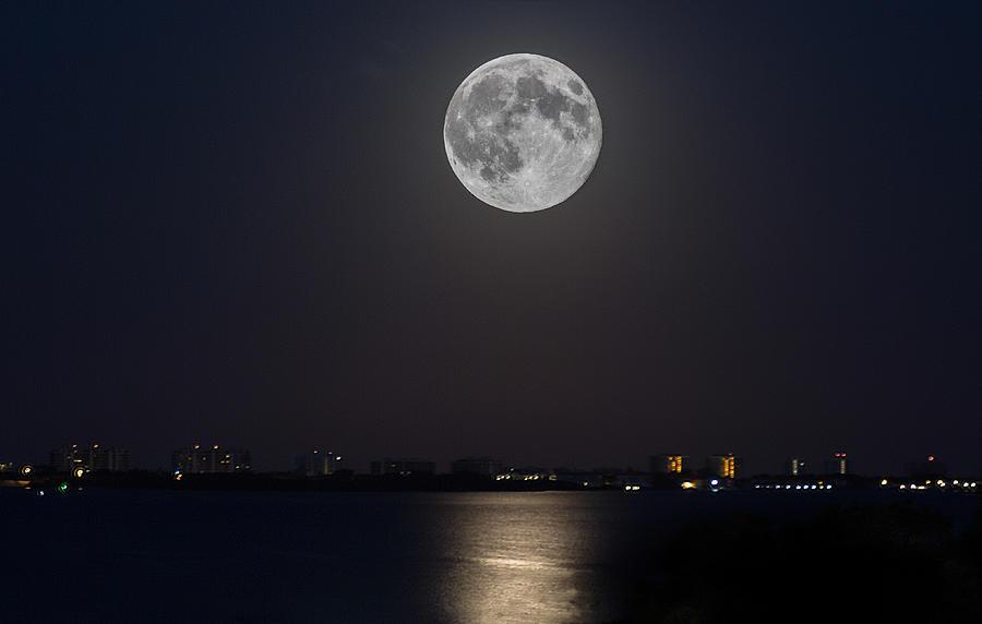 big moon over the bay richard jay goldman
