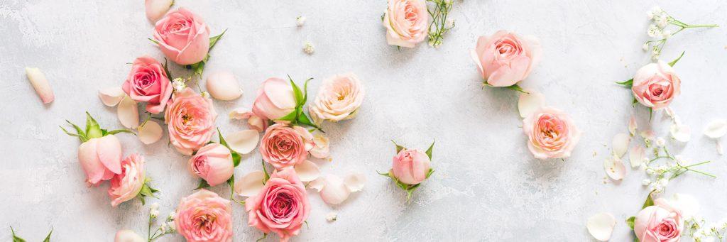 pink flowers hero 1